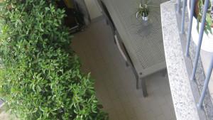 Progetto di interni per una residenza privata. Vista del tavolo e della siepe sul balcone.